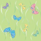 Butterfly illustration. Vector art background Royalty Free Stock Photo