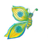 Butterfly illustration Stock Photography