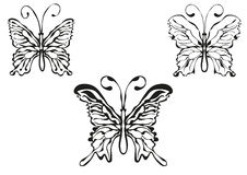 Butterfly  illustration. Contour, ornament Royalty Free Stock Photography
