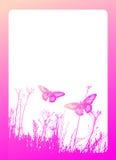 butterfly illustration иллюстрация штока