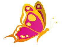Butterfly illustration. Butterfly illustration photo for design and website Royalty Free Stock Photos