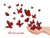 Free Butterfly In Hands. Flying Wings Papillon Farfalle Monarchs Many Colored Butterflies Vector Concept Stock Photography - 165547722