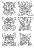 Butterfly insect tribal celtic ornaments Royalty Free Stock Photography