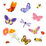 Butterfly insects bee ladybug Stock Photos
