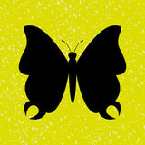 Butterfly isolated design Royalty Free Stock Images