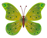 Butterfly isolated.  EPS10 Vector Stock Photography