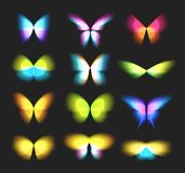 Butterfly isolated logos set. Bright colorfull butterflies wings, dynamic movement, blurred effect icons set. Abstract. Vector logotypes on black background stock illustration