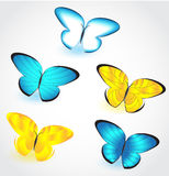 Butterfly isolated set. Vector Stock Images