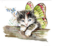 Butterfly kitten Stock Photo