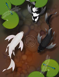 Butterfly koi fish swimming in pond with dragonflies and lily pads. Stylized butterfly koi fish swimming in a pond with lily pads and dragonflies Royalty Free Stock Image