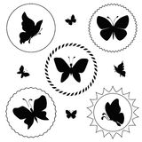Butterfly label Royalty Free Stock Photos