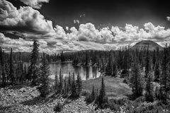 Butterfly Lake View HDR BW Royalty Free Stock Images