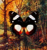 Butterfly and landscape forest  painting and  rust structure Royalty Free Stock Photos