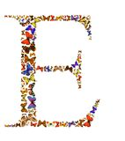 Butterfly letter. Butterfly font in white. Letter E Royalty Free Stock Photography