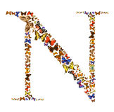 Butterfly letter. Butterfly font in white. Letter N Stock Photos
