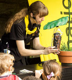 Butterfly life. Biologist explaines to children butterfly life cycle at Montreal Botanical garden stock images