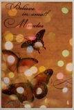 Butterfly in light. Butterflies and text with lights and dots stock photography