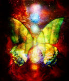 Butterfly with light energetic chakras in cosmic space. Painting and graphic design. Butterfly with ornament in cosmic space. Painting and graphic design stock illustration