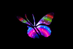 Butterfly Light Painting Image Royalty Free Stock Photography