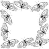 Butterfly line art black and white frame design Royalty Free Stock Photo