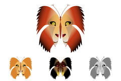 Butterfly with a lion on the wings. Stock Photos