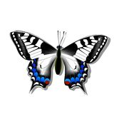 Butterfly machaon on white background with shadow, gradient, 3d. Insect Stock Image