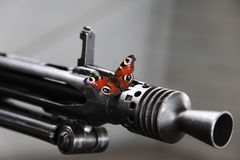 Butterfly on a machinegun. Peacemaker concept. War and peace Royalty Free Stock Image