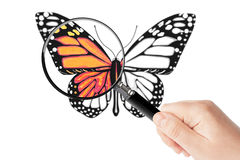 Butterfly and magnifying glass in hand Royalty Free Stock Photos