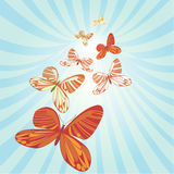 Butterfly Migration. Red, orange, green against a light green light burst, vector illustration Royalty Free Stock Photo