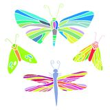 Butterfly, moth, dragonfly illustration set Royalty Free Stock Image