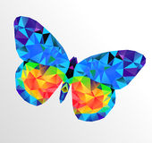 Butterfly  multicolor logo Royalty Free Stock Images