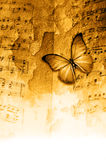 Butterfly music grunge. Composite of butterfly, music sheet and grunge wall Royalty Free Stock Photo