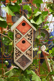 Butterfly nesting box Stock Image