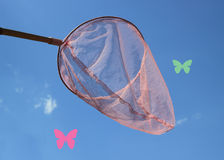 Butterfly Net Stock Photo