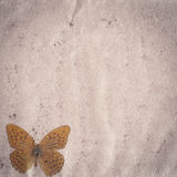 Butterfly old grunge paper texture Stock Photography