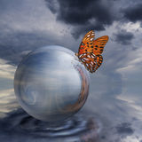 Butterfly On Crystal Ball Stock Photo
