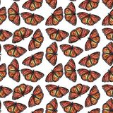 Pattern with butterflies. vector illustration