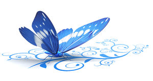 Butterfly. On an ornate background Royalty Free Stock Images
