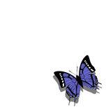 Butterfly on paper  06. Vector. Butterfly on paper  06 Royalty Free Stock Images