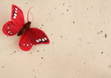 Butterfly and paper background Stock Images