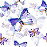 Butterfly pattern Stock Image