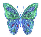 Butterfly. Patterned butterfly on a white background. Ornate moth. Hand drawn watercolor and liners. Can be used to design greeting cards, posters, t-shirts royalty free illustration