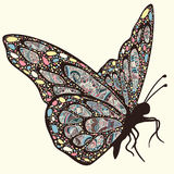 Butterfly with patterns. Stock Images