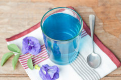 Butterfly-pea. Royalty Free Stock Photography