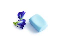 Butterfly pea, blue pea, Cordofan pea or Asian pigeonwings soap Stock Photo