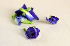 Butterfly pea or Blue pea flowers  on wooden background Stock Photo