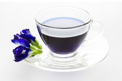 Butterfly pea in cup isolated on white background Royalty Free Stock Images
