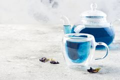 Butterfly pea flower blue tea. Healthy detox herbal drink. Stock Photography