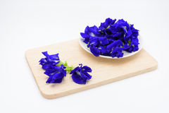 Butterfly pea flower in a cup on wooden plate on white backgroun. D Stock Photo