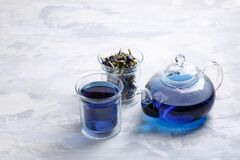 Butterfly pea flower tea is brewed in a glass teapot and served into a transparent cup. Blue herbal tea